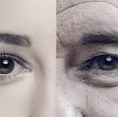 見た目と寿命の関係